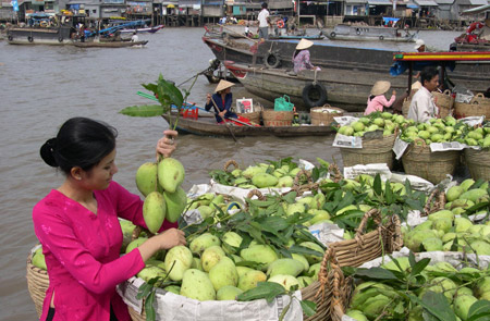 Explore Authentic Mekong Culture Tour – 2 Days