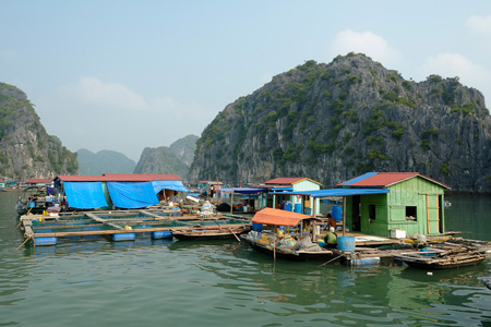 Floating Fishing Village, Halong Bay
