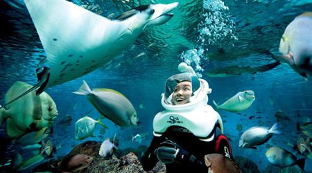 Cham Island The Second Place Provides Seabed Walking Tour in Vietnam