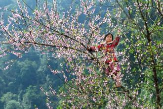 Northern Vietnam in Spring