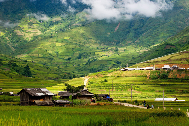 Scenic view of rice paddy fields in Bat Xat, Sapa