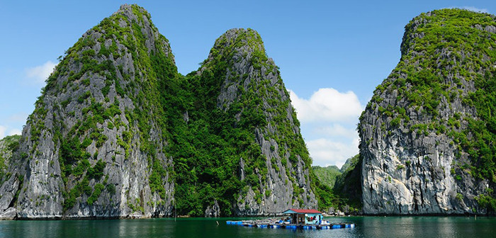 Hard-to-forget Emotional Experience When Visiting Ha Long Bay