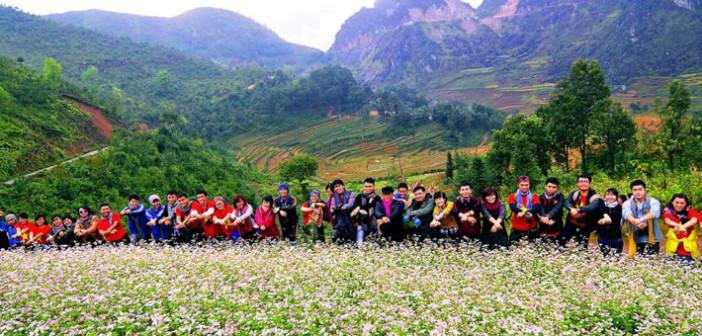 Tam Giac Mach Flower Season in Ha Giang