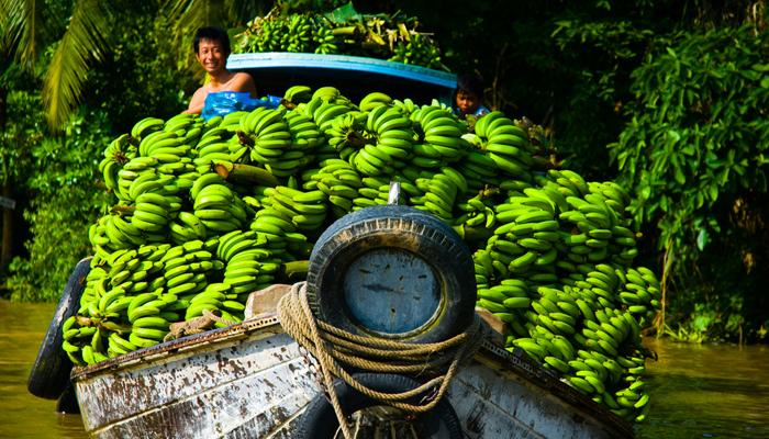 Bananas Boat in Mekong Delta