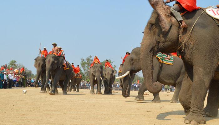 Elephant Racing Festival Vietnam