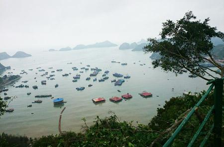 Ha Long Bay & Cat Ba Island Tour – 2 Days