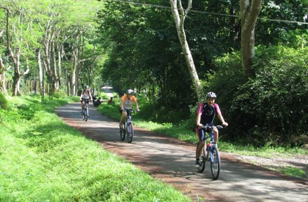 Cycling in Cuc Phuong National Park