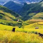 Sapa Trekking Tour from Hanoi – 3 Days