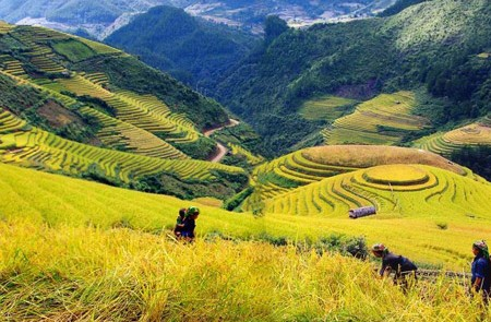 Sapa Trekking Tours 03 – 3 Days