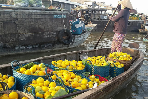 cai rang floating market 17 day vietnam tour package