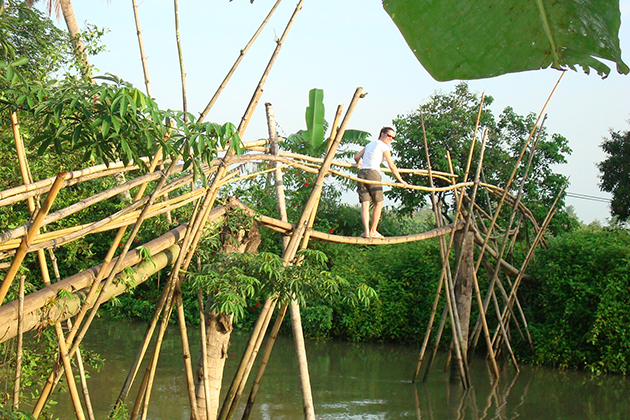 monkey bridge mekong delta
