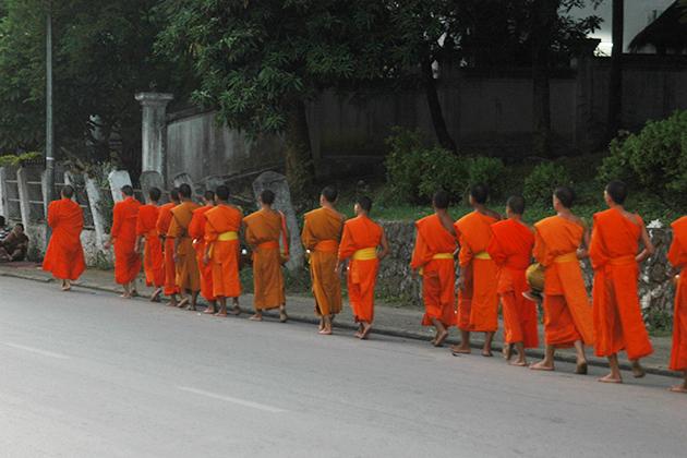 morning monks luang prabang