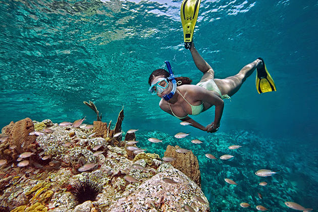 nha trang island and snorkeling tour 1 day