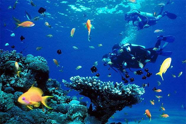 phu quoc 4-day itineraries scuba diving