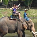 Elephant ride in Da Tien site, Dalat