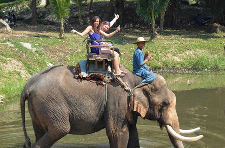 Elephant ride in Da Tien site, Dalat