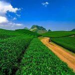 moc chau plateau lai chau vietnam adventure holiday