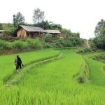 nghia lo vietnam itinerary 11 days