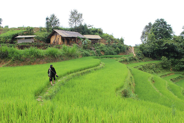 nghia lo vietnam itinerary 11 days