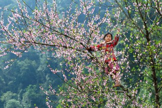 Northern Vietnam in Spring