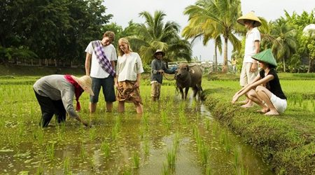 Hoi An Homestay Services Are Extended