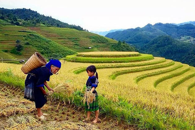 Sapa North Vietnam tour