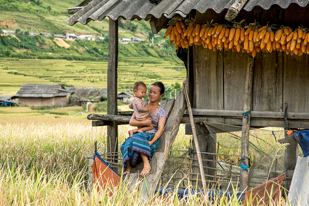 countryside lifestyle in vietnam