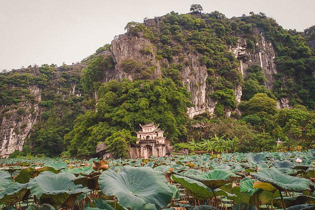 A Local's Guide to Bich Dong Pagoda, Ninh Binh