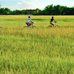Hoi An Countryside Cycling Tour Vietnam Luxury Tour 14 days Vietnam Local Tour Operator