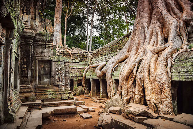 Beng Mealea Temple Cambodia Vietnam Tour