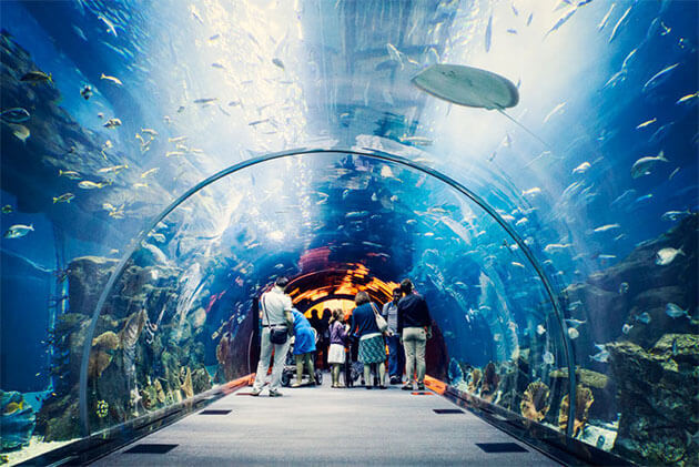 National Oceanographic Museum in Vietnam