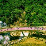 Golden Bridge Vietnam Family Holiday